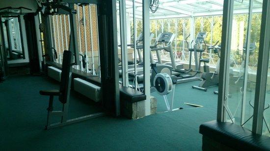 Craig-y-Nos Castle : Gym