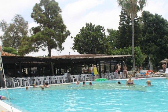 Paphos Gardens Holiday Resort: Вид с лежака на бассейн