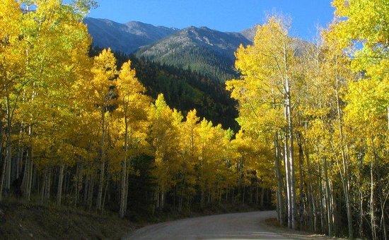 Fire Water Lodge: Mountain Retreat