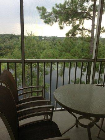 Sheraton Vistana Resort Villas- Lake Buena Vista : Balcony with mosquito net overlooking the lake