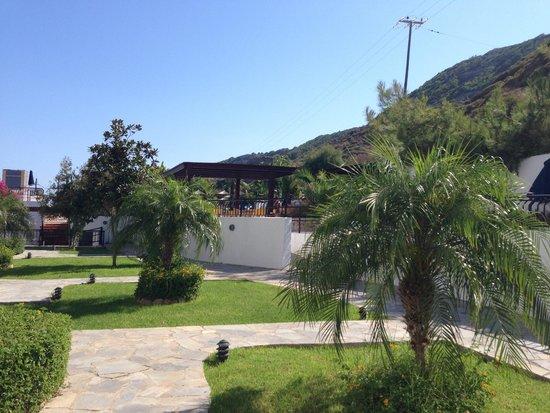 Sirene Beach Hotel : Près piscine