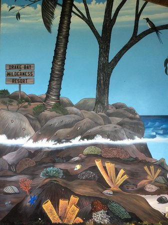 Drake Bay Wilderness Resort : Mural in the bar area