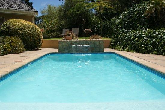 African Dreams: Swimming Pool