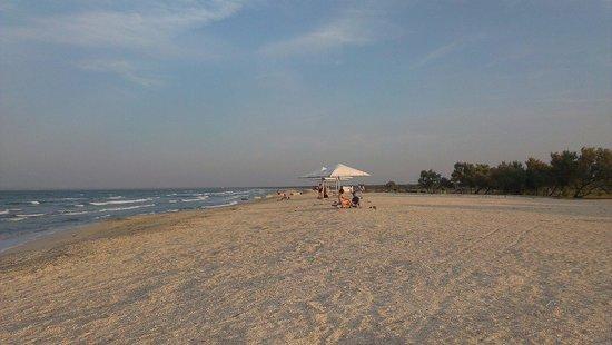 Beach Tatarka