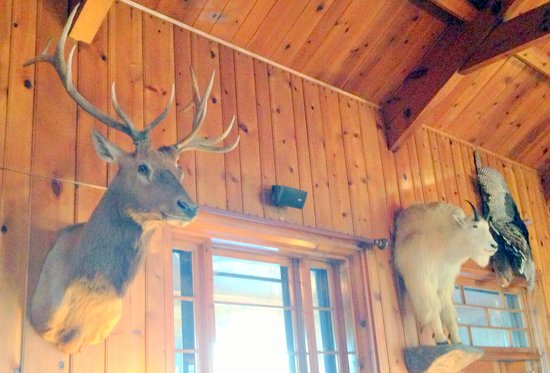 In Large Lobby/Sitting Room Area, Sylvan Lake Lodge, Custer, SD