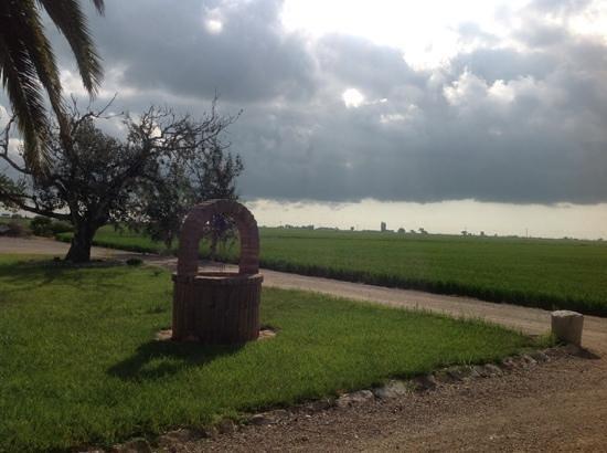 Mas del Tancat: vistas exteriores