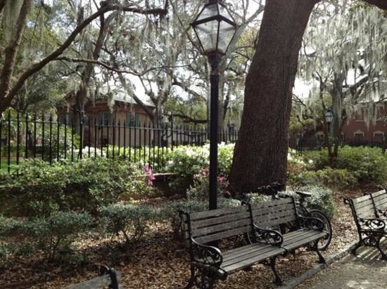 College of Charleston : Places to sit and relax.