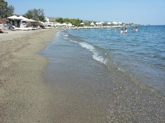Spiaggia foto di barcelo hydra beach resort thermisia for Piscina hydra villabate prezzi