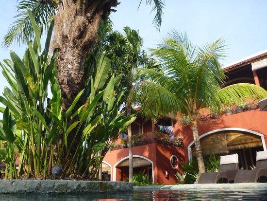 PinkCoco Bali : Garden view