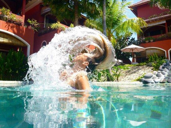 PinkCoco Bali : Poolfun
