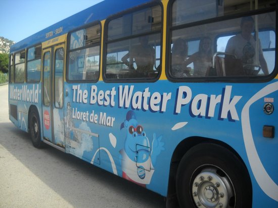 Water World: bus a/r
