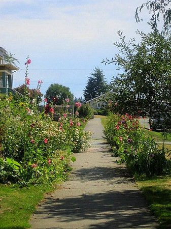 Fairhaven Historic District: Flowers along the street
