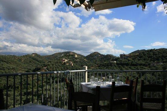 Hotel Rose: Restaurang Leventis i bergen
