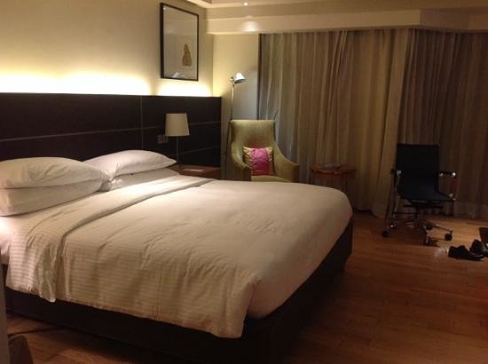 The Lalit New Delhi: king delux room
