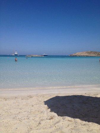 Playa de Ses Illetes: Paradiso....