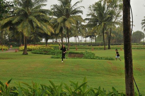 Park Hyatt Goa Resort and Spa: the landscaping