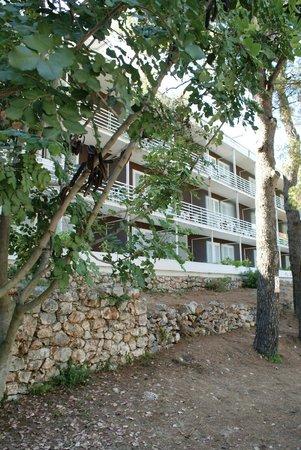 Adriatiq Resort Fontana: Un des batiments de l'hotel