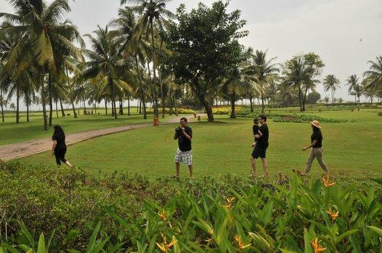 Park Hyatt Goa Resort and Spa : the lawn and beach