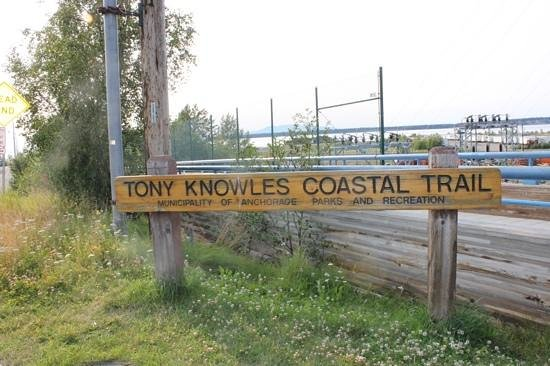 Tony Knowles Coastal Trail: tony knowles rocks!