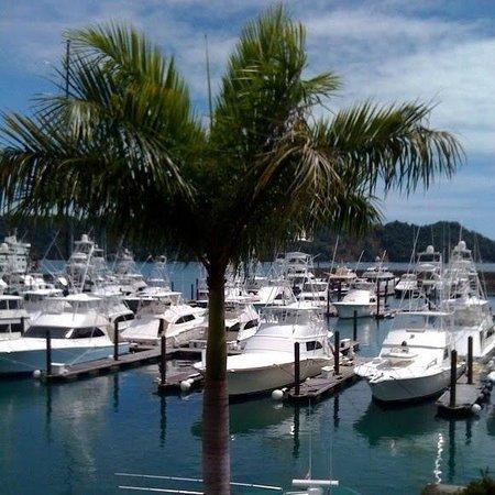 Los Suenos Marriott Ocean & Golf Resort: Marina