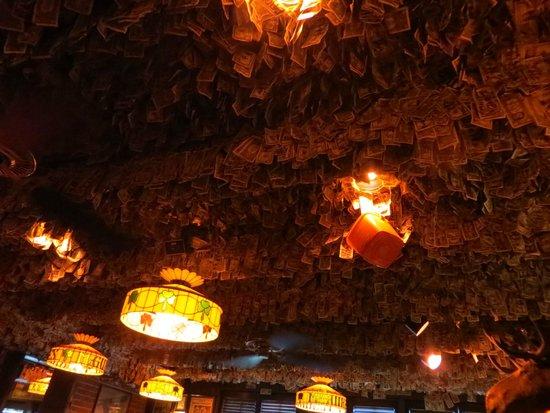 McGuire's Irish Pub & Brewery: $1 bills EVERYWHERE!