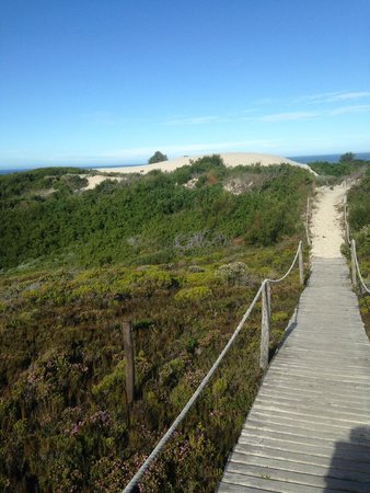 De Hoop Collection Nature Reserve: beach