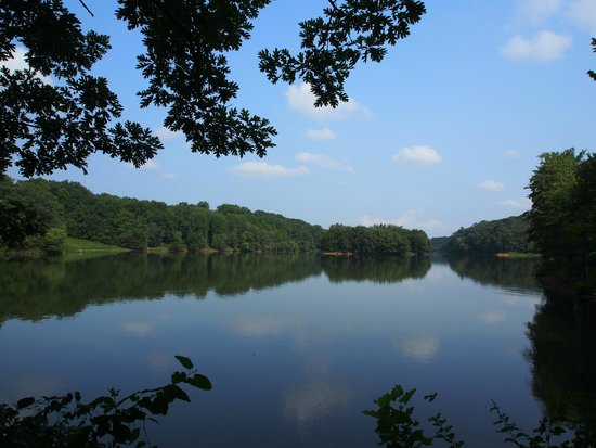 Lake Needwood : View of the Lake