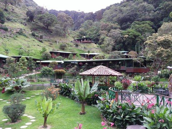 Trogon Lodge San Gerardo de Dota : Grounds. Lodge 23 is centre top.