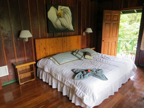 Trogon Lodge San Gerardo de Dota : Bedroom