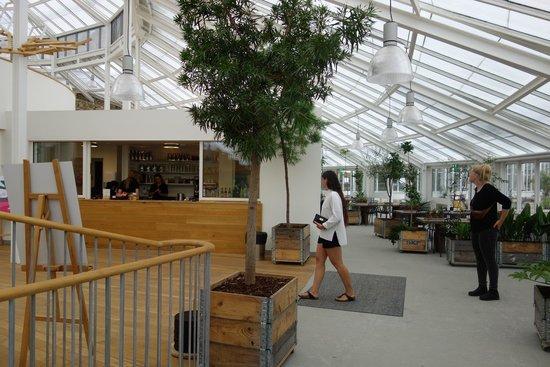 Væksthusets Café Billede Af Botanisk Have Og Væksthusene århus
