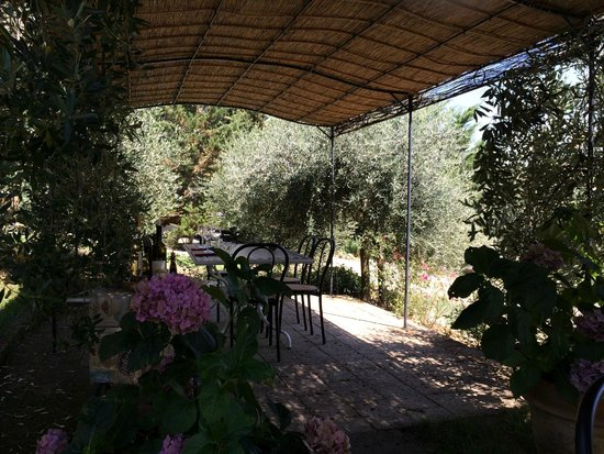 Tenuta Casanova : View of the lunch area