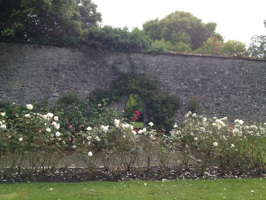 Adare Manor Hotel & Golf Resort: Stop and smell the roses