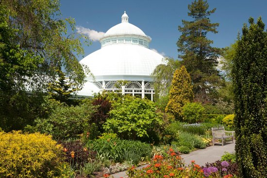 Photo of Tourist Attraction New York Botanical Garden at 2900 Southern Blvd, Bronx, NY 10458, United States