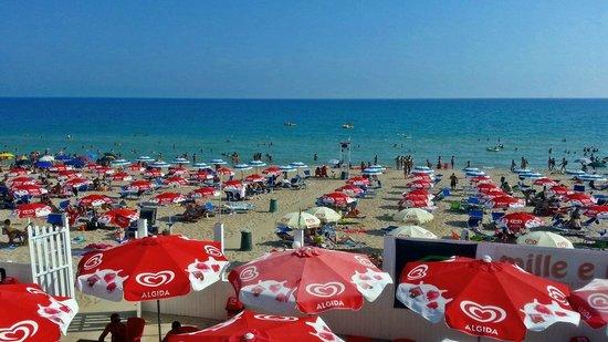 Panama Beach : La spiaggia attrezzata