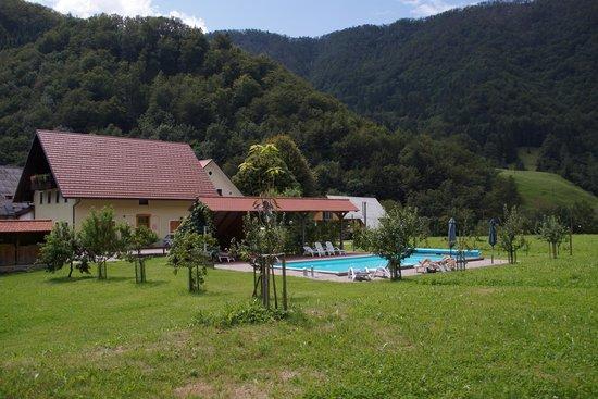 Tourist Farm Zelinc : Zwembad met voldoende schaduw
