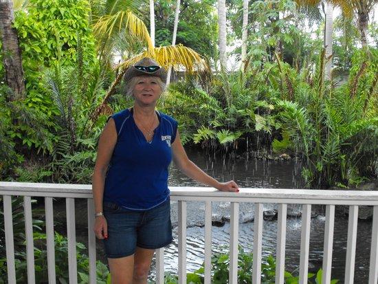 Vista Sol Punta Cana: Front Lobby