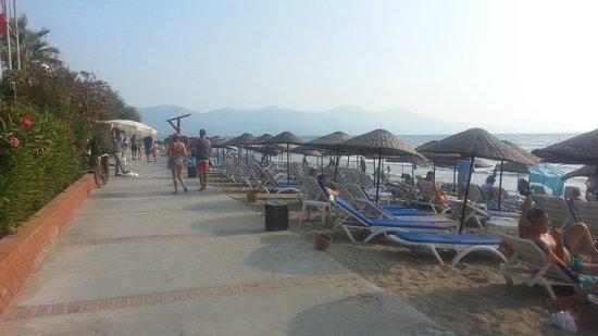 Ephesia Hotel: Beach