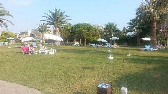 Ephesia Hotel: Grass area