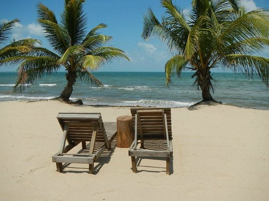 driftwood beach bar & pizza shack : beachside view