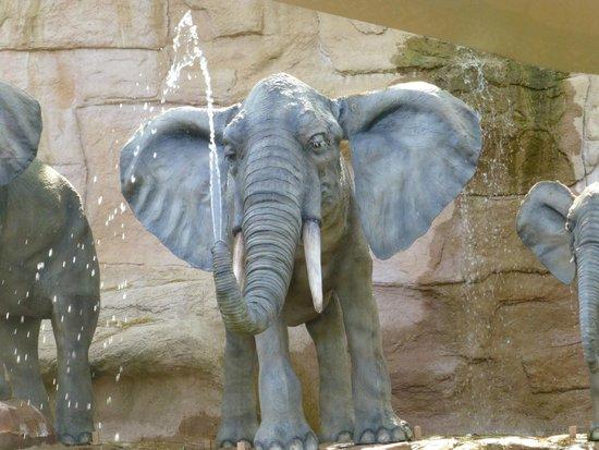 Nigloland : éléphant à Africa Cruise