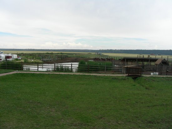 "Mormon Lake Lodge and Campground : View of the ""petting zoo"" and the vast meadow beyond."
