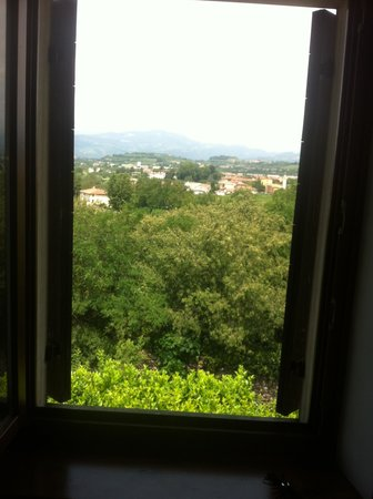 Relais Villa Sagramoso Sacchetti: Room with a view...