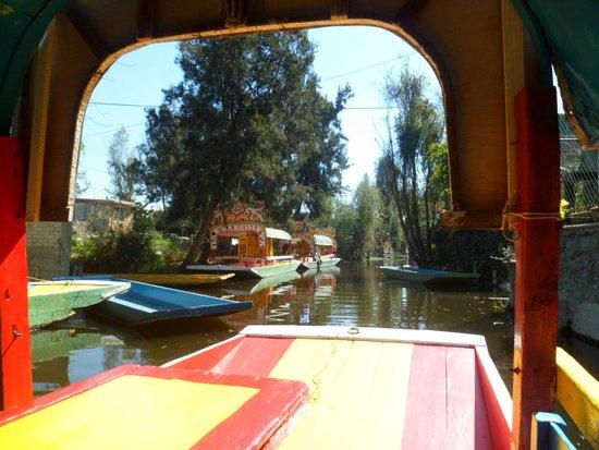 Parque Chapultepec: Вид из  лодочки