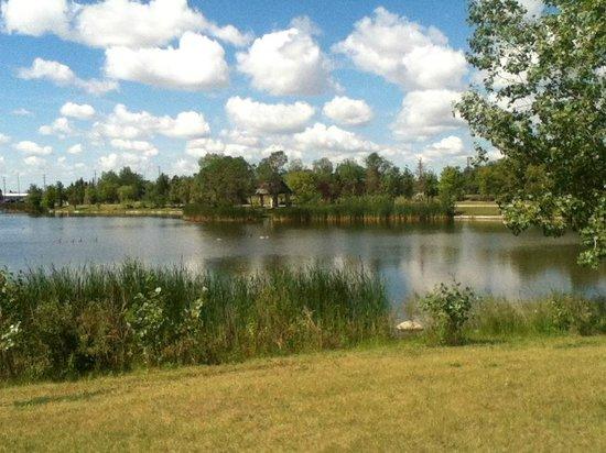 Kilcona Regional Park