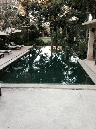 Komaneka at Monkey Forest: The pool was pristine and peaceful.