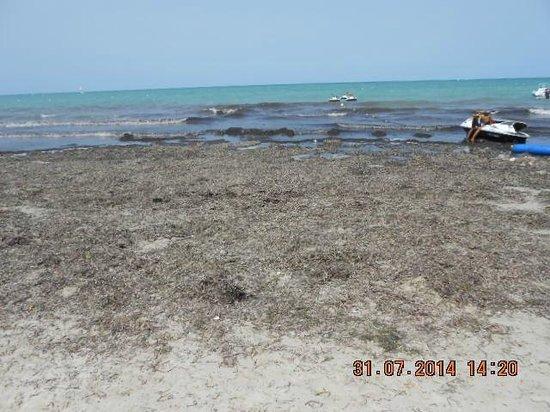 Joya Paradise : la plage de joya