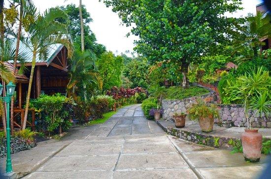 Ladera Resort : reception area