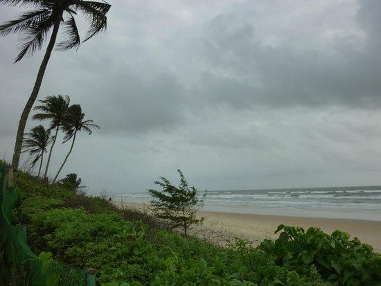Taj Exotica Resort & Spa Goa: Beach