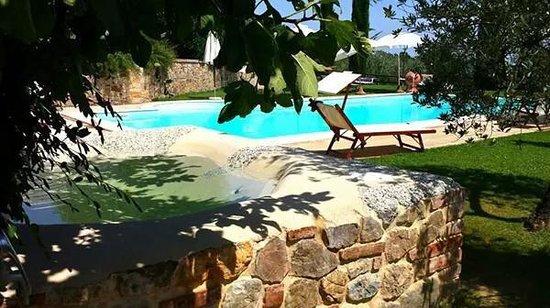 Agriturismo Belagaggio: Prospettiva meravigliosa ... Piscina e vasca idromassaggio