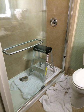 Hilton Garden Inn Washington DC/US Capitol: Our bathroom upon checkin
